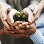 Ce te face sa fii vazut ca un lider – despre calitatile unui lider